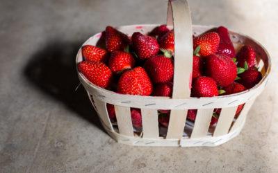 Les fraises sont de retour !